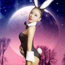 rabbit bar DS Party Bunny uniform temptation Dance Costume