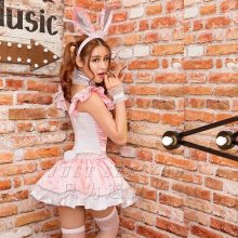 Adult Women Sexy Bunny Girl Costume Short Sleeves Pink Dress Fancy Club Erotic Outfit For Teen Girls